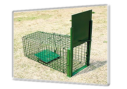 Wire Mesh Cages For Animals Breeding And Traps